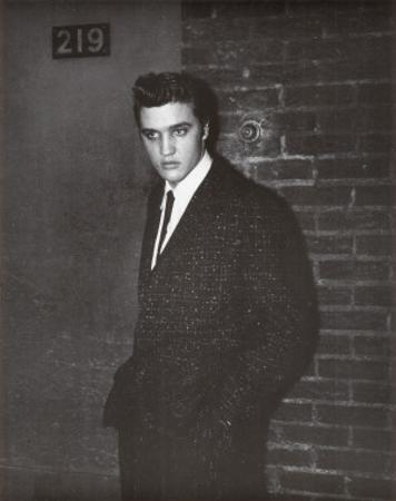 Elvis by Sherman
