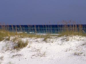 Beach on Gulf of Mexico, Al by Sherwood Hoffman
