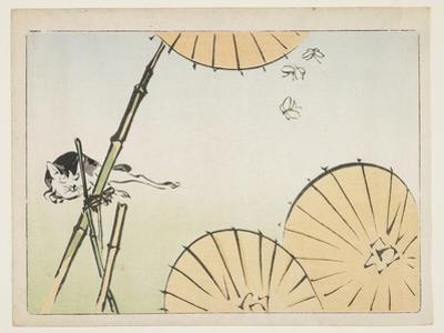 Bamboo, Umbrellas, a Cat and Butterflies, C. 1877