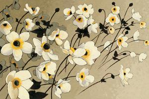 Anemones Japonaises Blancs by Shirley Novak