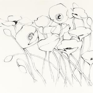 Black Line Poppies I by Shirley Novak