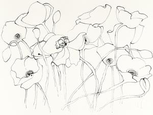 Black Line Poppies III by Shirley Novak