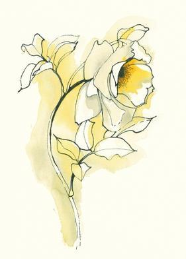 Carols Roses III by Shirley Novak