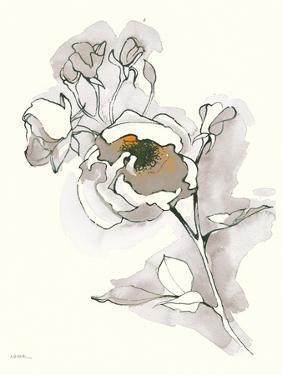 Carols Roses IV Tan by Shirley Novak