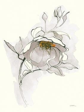 Carols Roses V Off White by Shirley Novak
