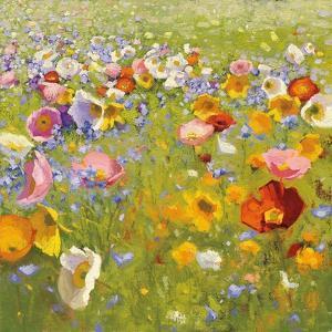 Champ de Fleur I by Shirley Novak