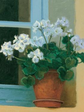 Creancey Geraniums II by Shirley Novak