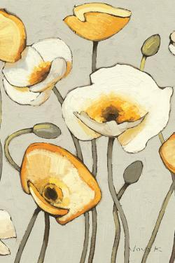 Jaune Gris III Crop by Shirley Novak