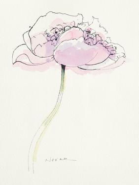 Single Pink Somniferum II by Shirley Novak