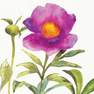 Summer Meadow Blossom Crop II by Shirley Novak