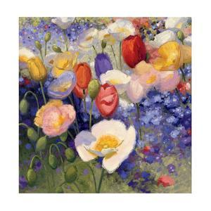 Tulips and Poppy Party by Shirley Novak