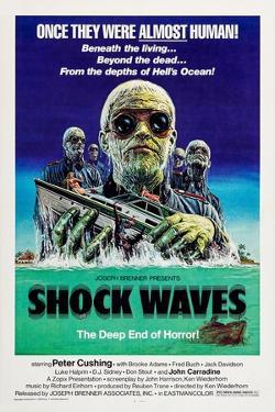 Shock Waves