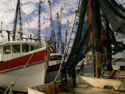 https://imgc.allpostersimages.com/img/posters/shrimp-boats-tied-to-dock-darien-georgia-usa_u-L-P42O4L0.jpg?p=0