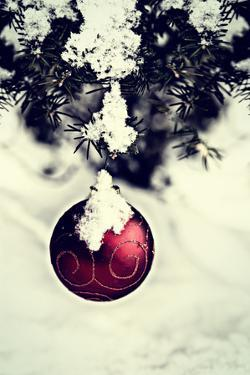 Christmas Ball Hanging on A Spruce Tree - Retro by SHS Photography