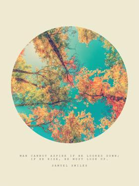 Inspirational Circle Design - Autumn Trees: Man Cannot Aspire if he Looked Down; if he Rise, he Mus by SHS Photography