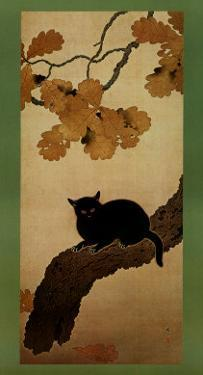 Black Cat by Shunso Hishida
