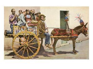 Sicilian Cart and Donkey, Palermo, Italy