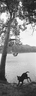 Side Profile of a Boy Swinging on a Rope Over a Lake