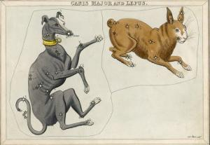 Canis Major (Dog) and Lepus (Hare) Constellation by Sidney Hall