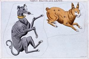 Constellations of Canis Major and Lepus, C1820 by Sidney Hall