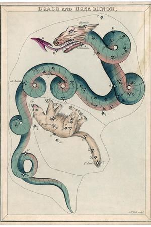 Draco and Ursa Minor Constellation
