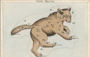 The Constellation of Ursa Major by Sidney Hall