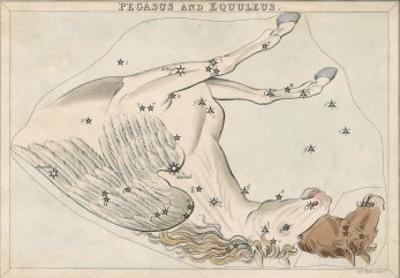 The Pegasus and Equuleus Constellation by Sidney Hall