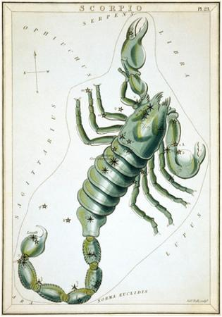 Urania's Mirror, Scorpio, 1825 by Sidney Hall