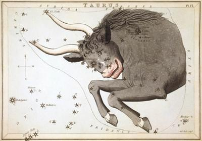 Urania's Mirror, Taurus, 1825 by Sidney Hall