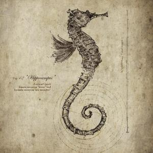 Seahorse by Sidney Paul & Co.
