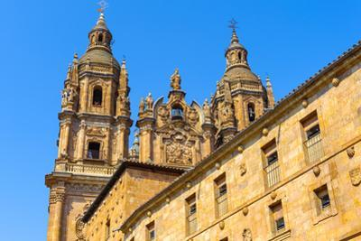 Cathedral in Salamnca, Spain by siempreverde22