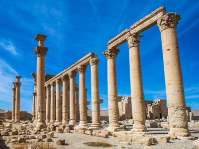 Great Colonnade at Palmyra Was the Main Colonnaded Avenue in the Ancient City of Palmyra in the Syr by siempreverde22