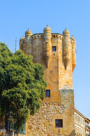 Tower Del Clavero (15Th Century), Salamaca, Spain by siempreverde22
