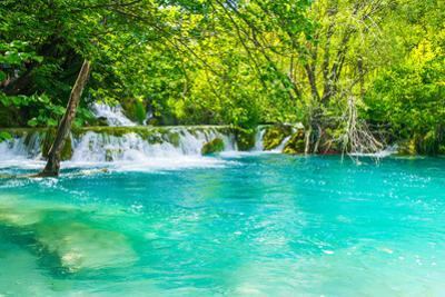 Very Beautiful Sigh of a Green Oasis in Croatia by siempreverde22