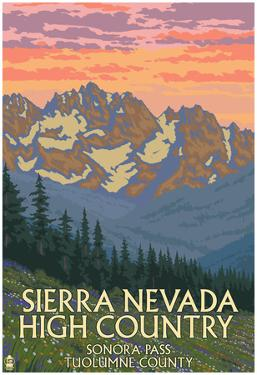 Sierra Nevada High Country - Sonora Pass, Tuolumne County, California - Spring Flowers