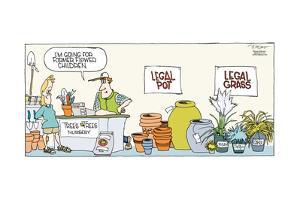 I'm going for former flower children. Tree's Tree Nursery. Legal pot. Legal grass. Festuca. Carex… by Signe Wilkinson
