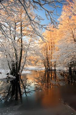 River Landscape by siilur