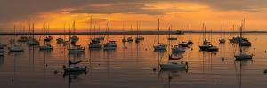Silhouette of boats in Atlantic ocean at dusk, Rockland Harbor, Rockland, Knox County, Maine, USA