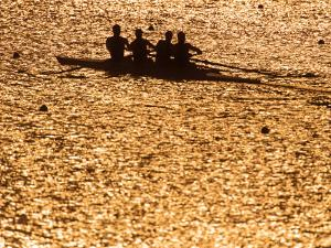 Silhouette of Men's Fours Rowing Team in Action, Atlanta, Georgia, USA