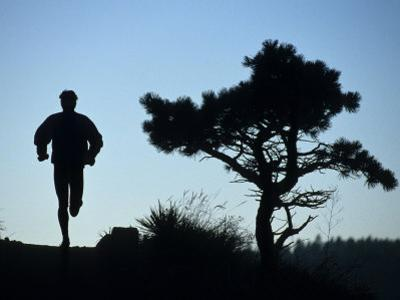 Silhouette of Runner and Tree