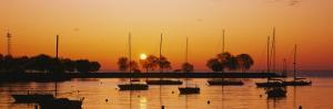 Silhouette of Sailboats in a Lake, Lake Michigan, Chicago, Illinois, USA