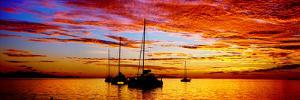 Silhouette of Sailboats in the Ocean at Sunset, Tahiti, Society Islands, French Polynesia