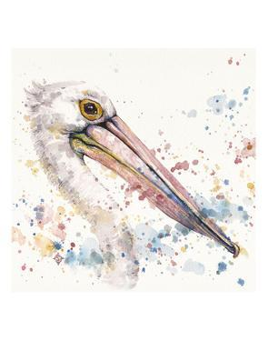 Pelicans About by Sillier than Sally