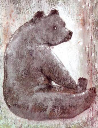 Bear by Silvana Crefcoeur