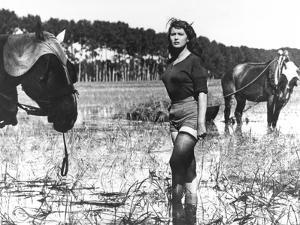 Silvana Mangano, Bitter Rice, 1949 (Riso Amaro)