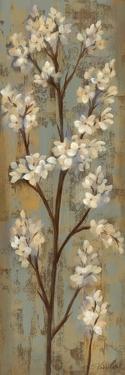 Almond Branch I by Silvia Vassileva