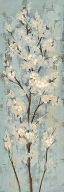 Almond Branch II on Light Blue by Silvia Vassileva