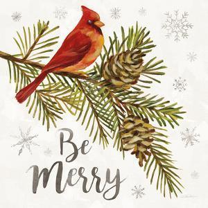 Cardinal Christmas VI by Silvia Vassileva