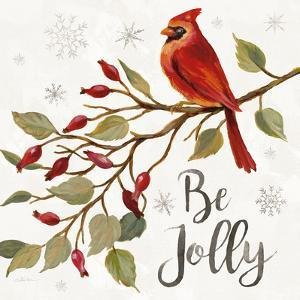 Cardinal Christmas VII by Silvia Vassileva