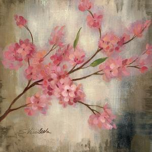 Cherry Blossom I by Silvia Vassileva